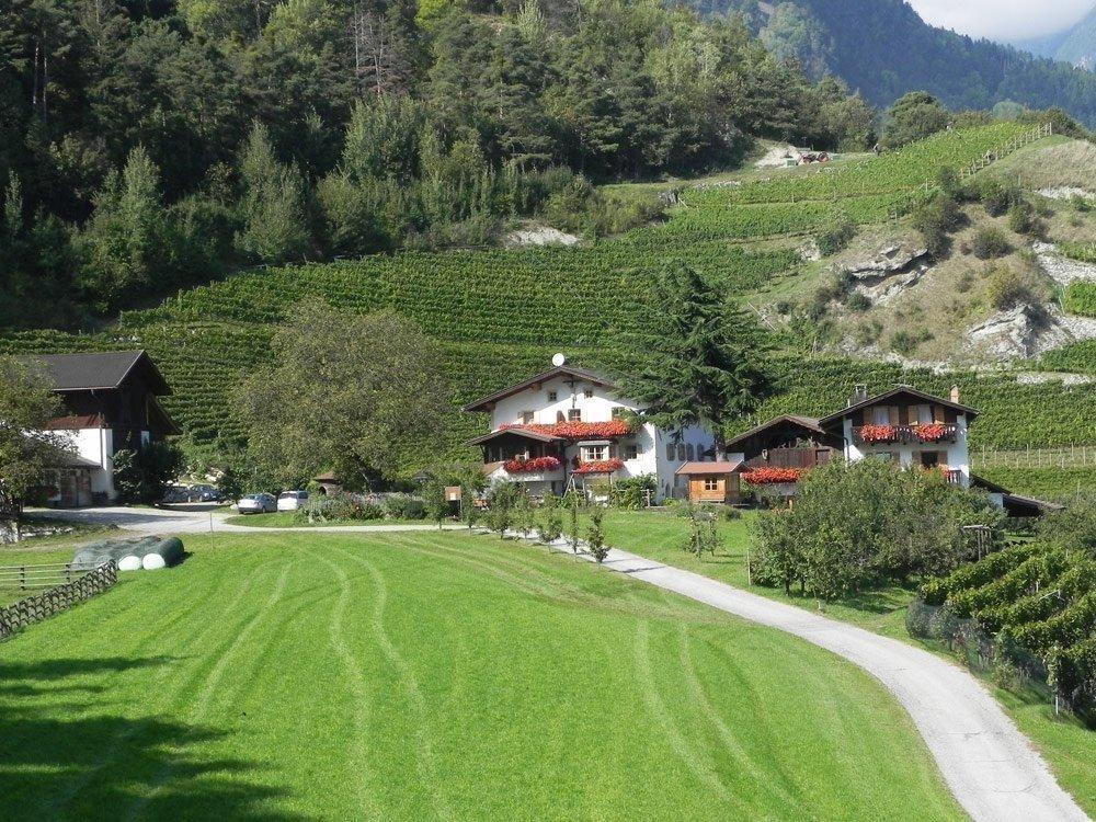 Punterhof – Urlaub auf dem Bauernhof in Vahrn/Neustift