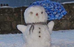 Schneemann auf Urlaub !!!!
